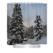 Snowy Fir Trees  Shower Curtain
