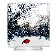 Snowy Forest At Christmas Time Shower Curtain