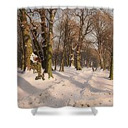 Snowy Forest Road 1908 Shower Curtain