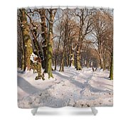 Snowy Forest Road In Sunlight Shower Curtain
