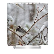 Snowy Grace Cardinals Shower Curtain