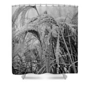 Snowy Grass Shower Curtain