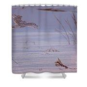 Snowy In Sunset Flight Shower Curtain
