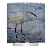 Snowy In The Surf Shower Curtain