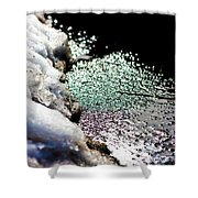 Snowy Lakeside Shower Curtain