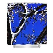 Snowy Limbs 14051 Shower Curtain