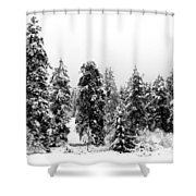 Snowy Morn Shower Curtain