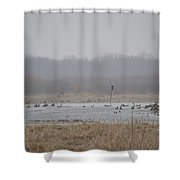 Snowy Morning On The Pond Shower Curtain
