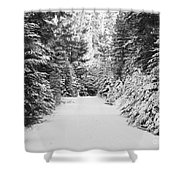Snowy Mountain Road - Black And White Shower Curtain