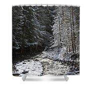 Snowy Oregon Stream Shower Curtain