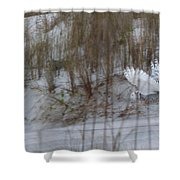 Snowy Owl In Florida 12 Shower Curtain