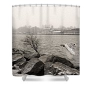 Snowy Owl In Motion Shower Curtain