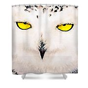 Artic Snowy Owl Painting Shower Curtain