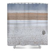 Snowy Owl Two Shower Curtain