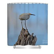 Snowy Perched Against A Bright Blue Sky  Shower Curtain