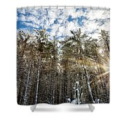Snowy Pines With Sunflair Shower Curtain