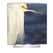 Snowy Portrait Shower Curtain