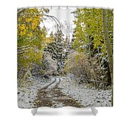 Snowy Road In Fall Shower Curtain