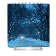 Snowy Road On A Winter Evening Shower Curtain