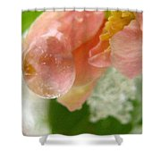 Snowy Spring 2 - Digital Painting Effect Shower Curtain