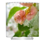 Snowy Spring 3 - Digital Painting Effect Shower Curtain