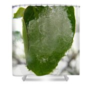 Snowy Spring 4 - Digital Painting Effect Shower Curtain