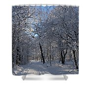 Snowy Trail Shower Curtain