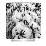 Snowy Tree - Black And White Shower Curtain