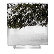 Snowy Tree Branches Shower Curtain