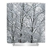 Snowy Tree Limb Maze II Shower Curtain