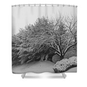 Snowy Trees In Black And White Shower Curtain