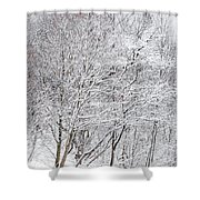 Snowy Trees In Winter Park Shower Curtain