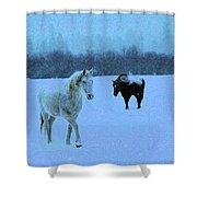 Snowy Walk Shower Curtain
