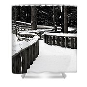 Snowy Walkway Shower Curtain