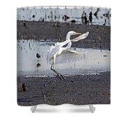 Snowy White Egret Shower Curtain