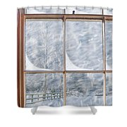 Snowy Window Shower Curtain
