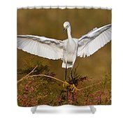 Snowy Wingspread Shower Curtain