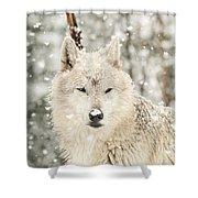 Snowy Wolf Shower Curtain