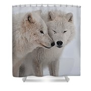 Snuggle Buddies Shower Curtain