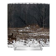 So Came The Autumn And The Winter Shower Curtain