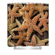 So Many Starfish Shower Curtain