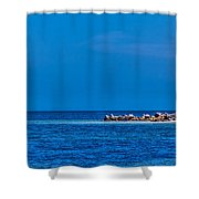 So This Is The Gulf Of Mexico Shower Curtain