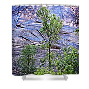 So Zion 2 Shower Curtain