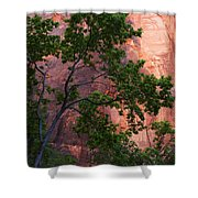 So Zion 3 Shower Curtain