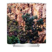 So Zion Shower Curtain