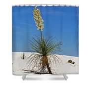 Soap Yucca Shower Curtain