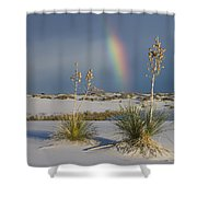 Soaptree Yucca And Rainbow White Sands Shower Curtain