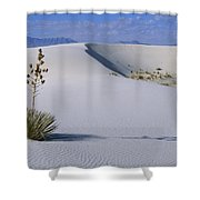 Soaptree Yucca At White Sands Nm Shower Curtain