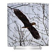 Soaring Above Shower Curtain