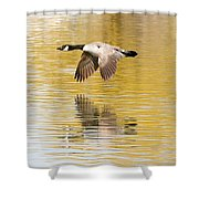 Soaring Over The River Shower Curtain
